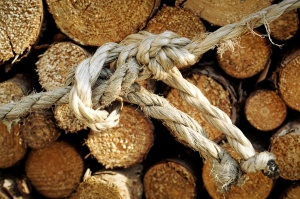 old ropes, wood, close, node, timber