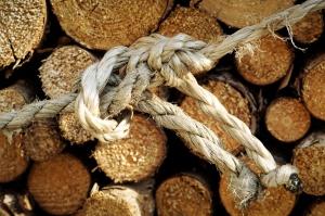 old ropes, wood, close, node, timber