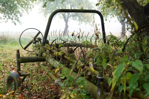 agricultural machine, old, rust, grass