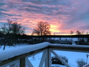 cielo, neve, alberi, tempo, inverno, crepuscolo, fiocco di neve