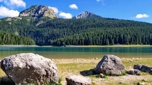 träd, stenar, vatten, moln, barrträd, skog, sjö, natur, landskap, moln