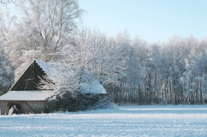 old house, wooden barn, winter, snowflakes
