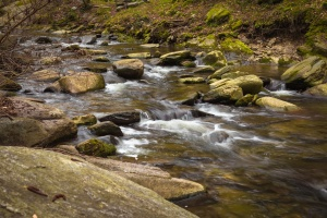mountain river, nature, rocky river, shallow water, spring, lichen, moss