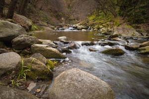 fast river, nature, big rocks, water, spring, stones, rocks, forest