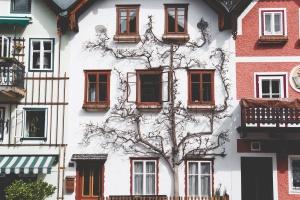 maisons, rue, extérieur, arbre, urbain, village, mur, fenêtres