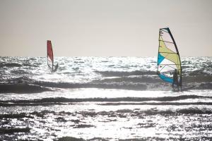 playa, surf, viento, horizonte, océano, verano, diversión, deporte, vela