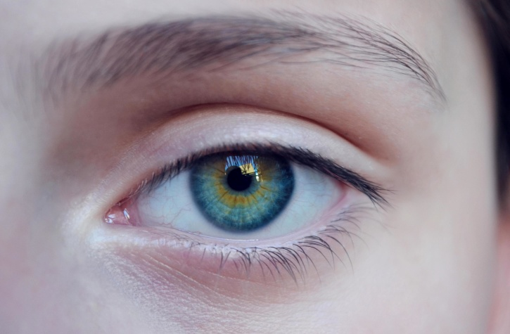 blue, women, eye, eyebrow, blue eye, glance, face