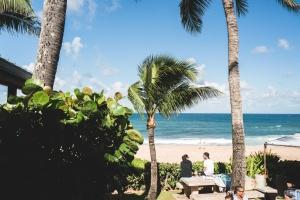 φοίνικες, καλοκαίρι, παραλία, άμμου, αιγιαλού, νερό, μπλε του ουρανού