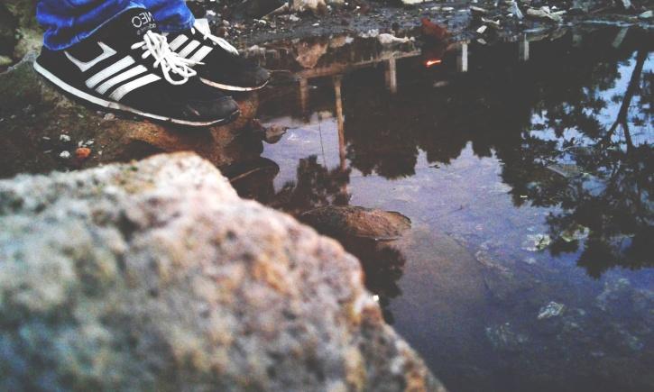 drveća, vode, sportske cipele, casual, obuća, jezero