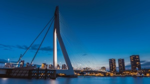 city, night, bridge, architecture, river, suspension bridge, dusk, night, downtown, cityscape