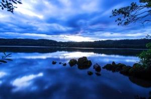 nuages, rochers, la mer, les arbres, les feuilles, ciel, paysage, crépuscule, nature