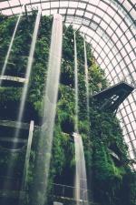 Ásia, beleza, jardim botânico, cascata, design