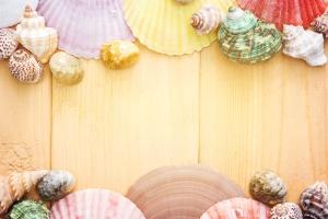 ljeto, tekstura, ljuštura, more, školjke, drvenim daskama