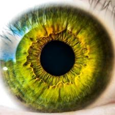 menschliche Auge, einzigartig, schauen, Anatomie, Biologie