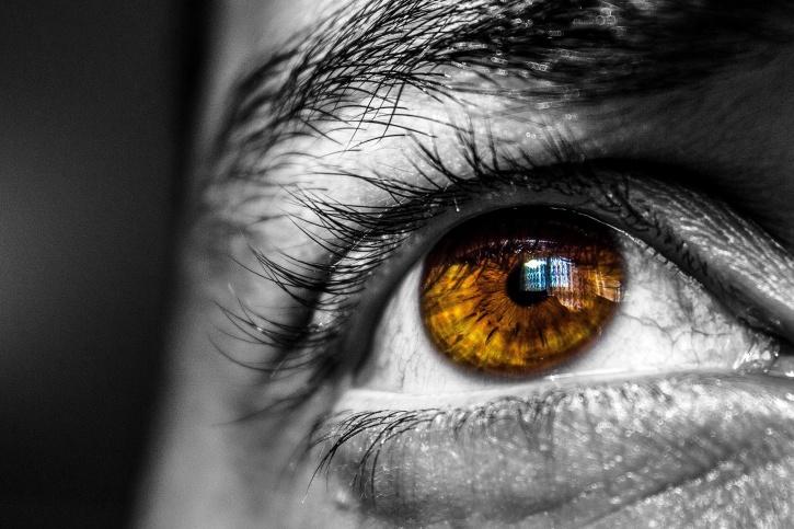visage, yeux, les paupières, les cils, les sourcils, l'homme