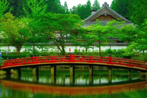 ponte di legno, l'Asia, il ponte, tradizionale