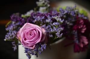 rosa, rose, bouquet, fiori, petali