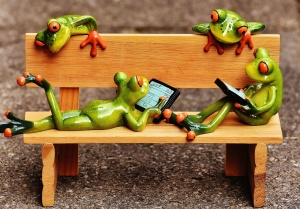 toy, amphibian, bench, childhood, cute, frogs