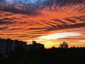 nebo, sunce, zalazak sunca, putovanja, drveće, oblaci, priroda