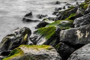 природи, Берегова лінія, океан, природи, краєвид, скелі, узбережжя, туман, туман, морські камені, зелений,
