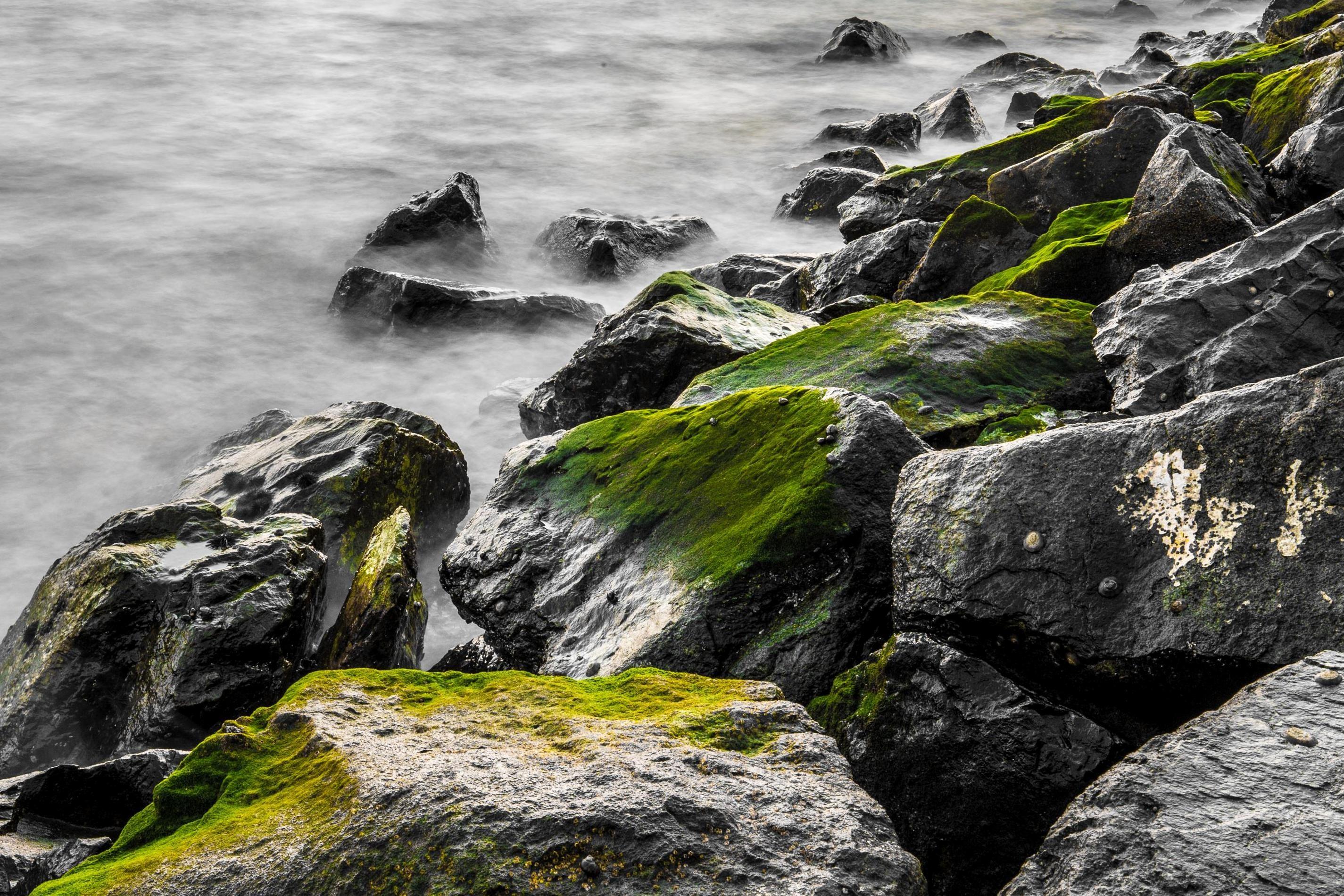 Free Picture Nature Coastline Ocean Nature Landscape Rocks Coast Fog Foggy Stones Green Sea