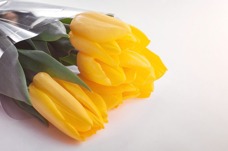 beautiful flowers, bloom, blossom, bouquet, tulips, yellow
