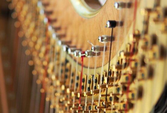 Instrument, klassisch, Kultur, Kurve, Tuning, Holz