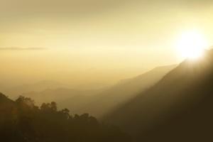 Bergen, heuvels, bomen, prachtige, dawn, mist, gouden