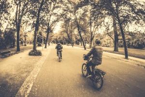 street, Road, woods, virkistys, ajoneuvon, polkupyörä, pyörä