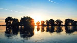 Sun, horizon, sunrise, sunset, trees, water