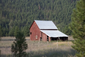 agriculture, house, architecture, barn, building, conifer trees