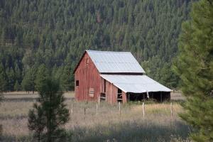 zemědělství, dům, architektura, stodoly, stavební, konifery