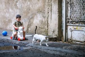 dijete ulice, zabava, dijete, dječak, mačka, pločnik