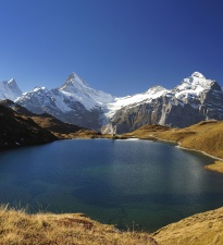 lake, blue, cold water, green grass, Alps mountain