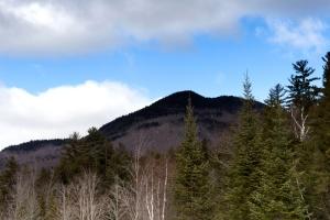 bosque, árboles de coníferas, naturaleza, paisaje, cielo, nubes, montañas