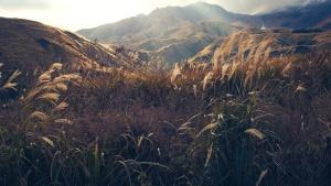 планина, природа, планини, природа, небе, слънчева светлина