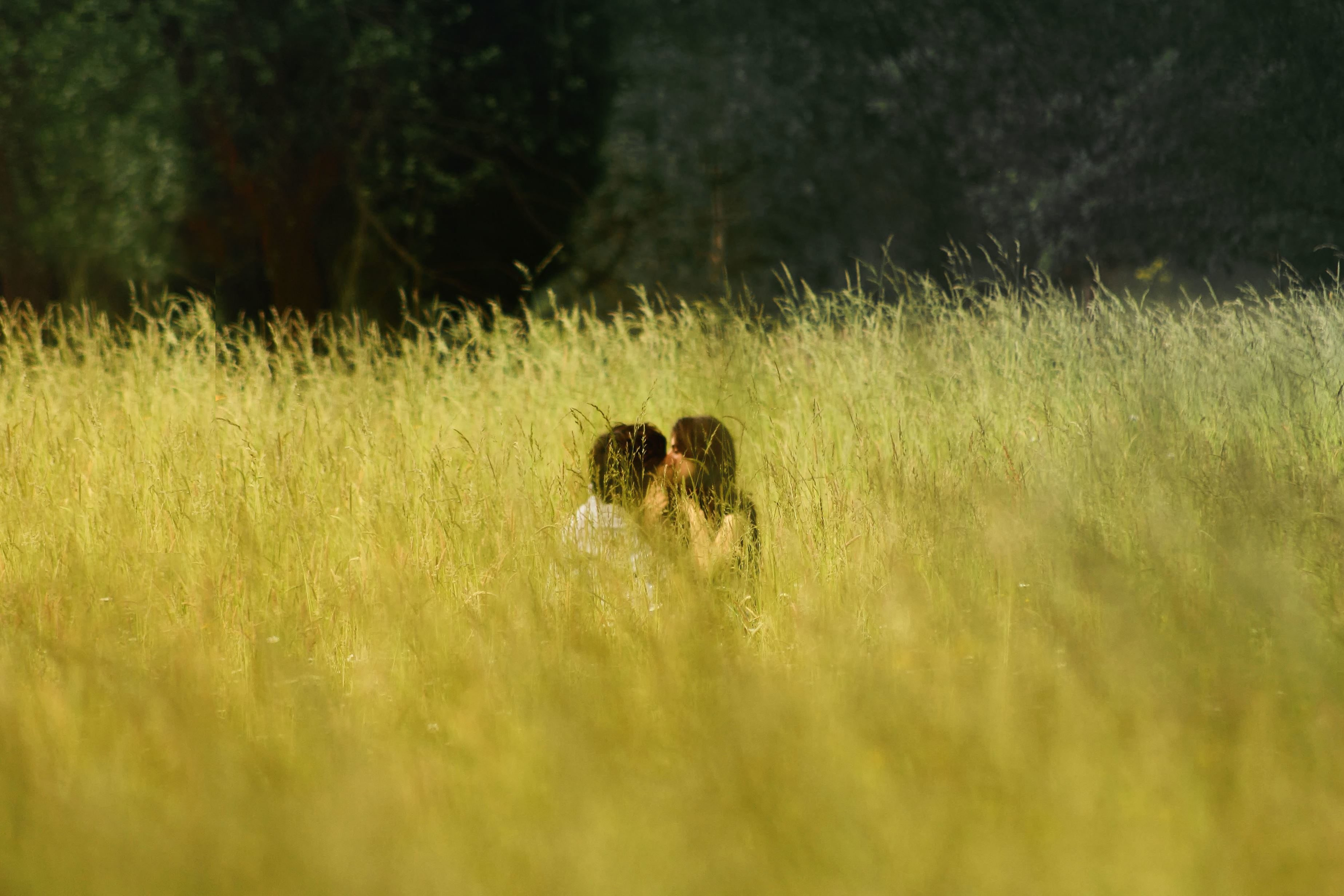 Free Picture Field Grass Boyfriend Girlfriend Kiss Love People Romance Romantic