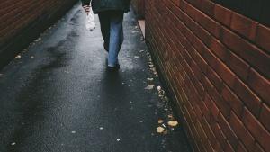 wall, bricks, pavement, person, asphalt