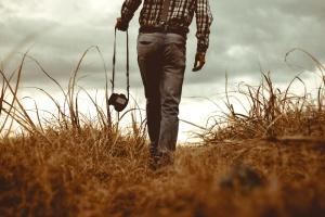 pasture, people, photographer, rural, summer, sunset, photos, wheat, wheat, field