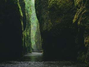 muschio, natura, fiume, rocce, ruscello, acqua