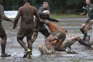rugby, sport, team, uniform, wet, ball, energy, field