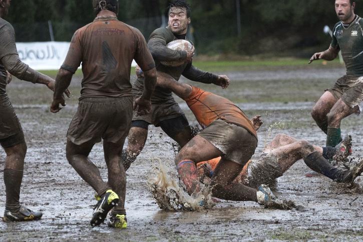 rugby, sport, team, uniform, wet, ball, energy, field