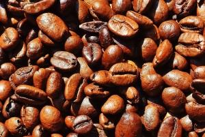 coffee beans, coffee, seed