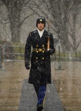 soldat, vinter, vakt, helten, ære, mann