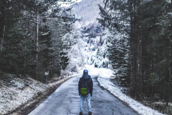 snow, travel, trees, weather, winter, road, cold, person
