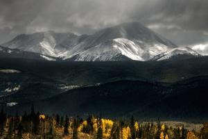 hory, hmla, Les, príroda