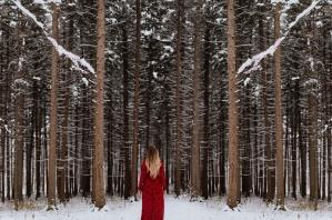 tuyết, cây, chi nhánh, đóng băng, mùa đông, người phụ nữ, gỗ