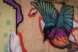 bird, graffiti, street, wall, art
