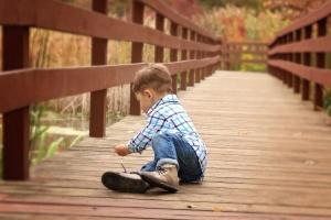 bridge, child, childhood, forest, fun, happiness, happy