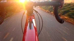 bicycling, bike, travel, vehicle, race, road, speed, street, sun